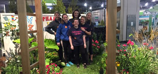 Abington Senior High School Garden Club Wins Two Awards for Displays at the Philadelphia Flower Show