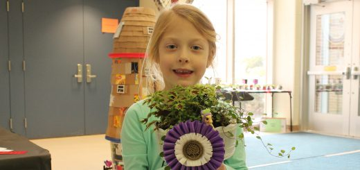 """As the Philadelphia Flower Show Opens This Week, Abington Elementary Students' """"Best of Junior Flower Shows"""" Entries On Display at the """"Big Show"""""""