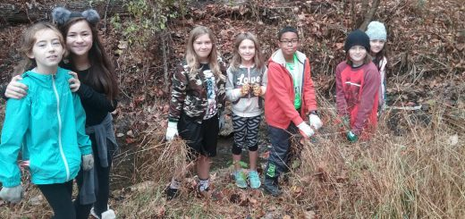 McKinley Elementary School's Roots and Shoots Club Does McWood's Cleanup and Restoration