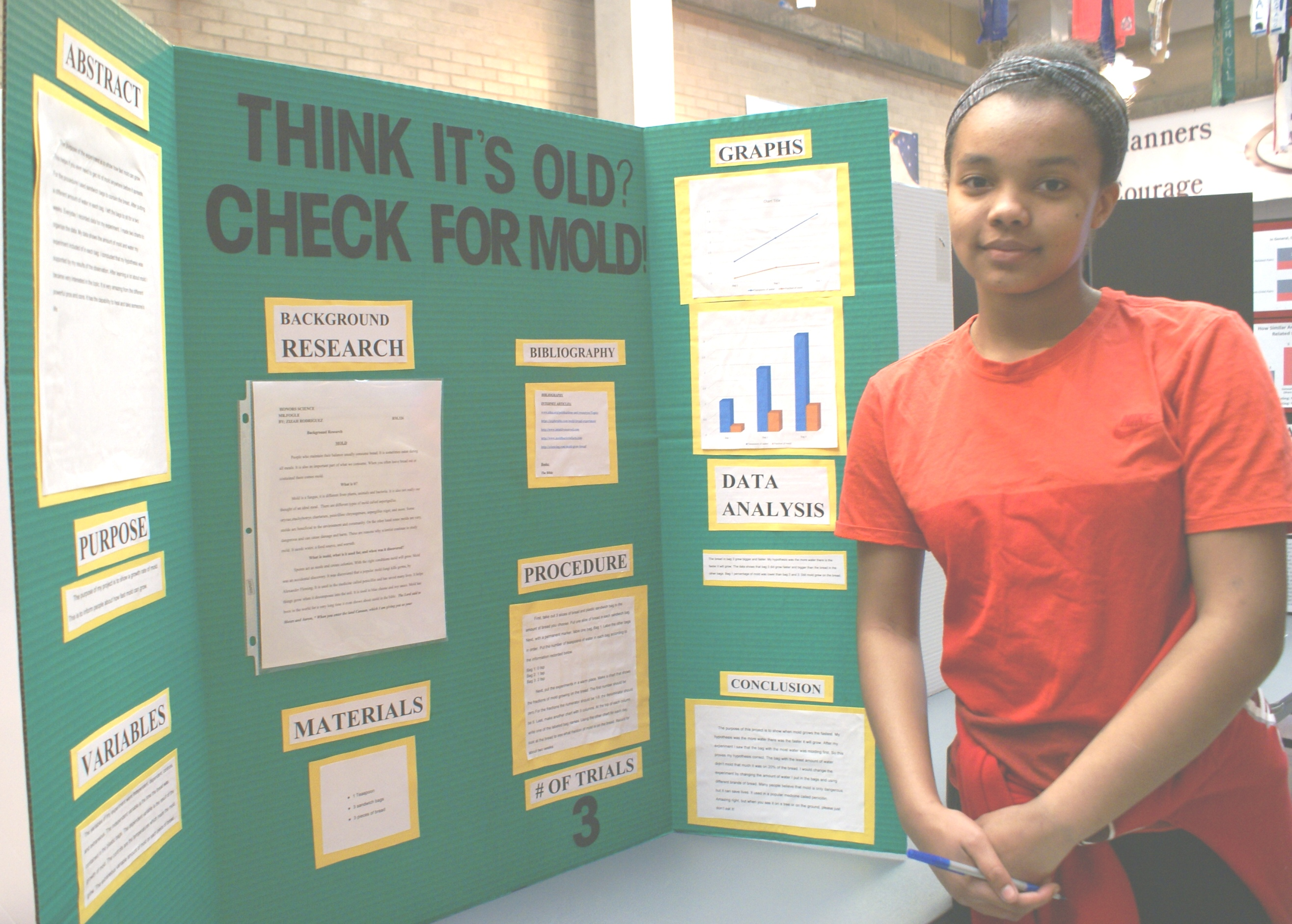 science fair projects for high school working model