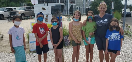 APEX Students Get Hands-On Learning Experience Over Summer Break