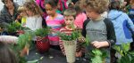 Overlook Elementary Students and Staff Create Philadelphia Horticultural Society Junior Flower Show Entries